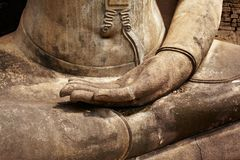 Buddha palm Stock Images