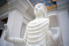Buddha palma z kołem Fotografia Stock