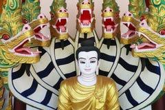 Buddha Pang Nagprock Immagine Stock