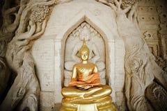 Buddha parkerar Royaltyfri Foto