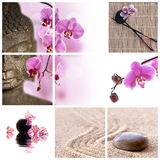 Buddha and pink phalaenopsis orchid. Collage Royalty Free Stock Image