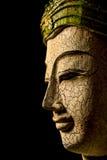 Buddha-Porträt auf schwarzem Hintergrund Stockfotos