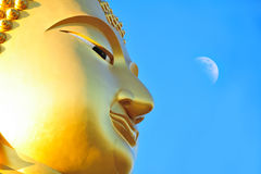 Buddha portrait isolated Stock Photos