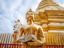 The Buddha Posture of Wednesday Royalty Free Stock Photo
