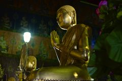 Buddha praying Royalty Free Stock Photo