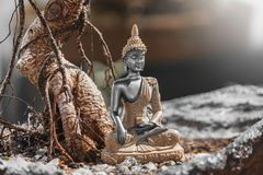 Buddha : A prince, warrior, meditator, and finally enlightened teacher. The Buddha: prince, warrior, meditator, and finally enlightened teacher. The word Buddha stock photo