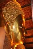 Buddha profile Royalty Free Stock Image