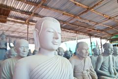 Buddha respectable face Stock Photography