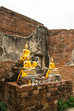 Buddha in the ruins Royalty Free Stock Photos
