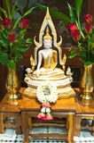 Buddha's Stock Images