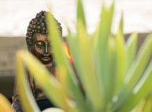 Buddha-` s Garten stockfotografie