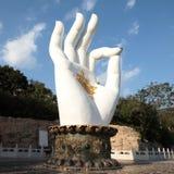 Buddha's hand Stock Images