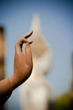 Buddha's hand close up Stock Photos