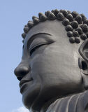 Buddha's Head Stock Photo