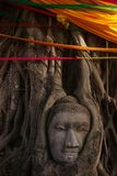 Buddha's head in banyan tree roots Stock Photography