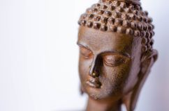 Meditating Buddha head. Buddha`s head on white background Royalty Free Stock Photos