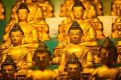 Buddha Sakyamuni statues Stock Photos