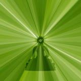 Buddha-Schattenbild Stockfoto
