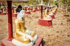 Buddha Sculpture Field Stock Photos