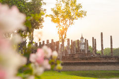 Buddha sculpture and temple ruins Royalty Free Stock Photo