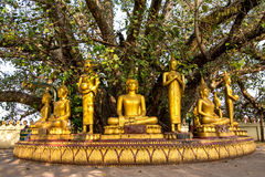 Buddha sculptures at Pha That Luang royalty free stock photos