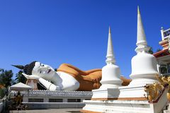 buddha sen obrazy royalty free