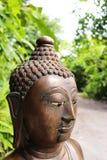 buddha shot Stock Images