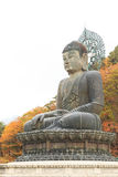 Buddha in the Sinheungsa Temple at Seoraksan National Park Royalty Free Stock Image