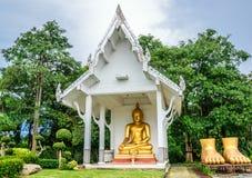 buddha sitting Royaltyfri Foto