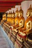 Buddha sitting in line and meditating Wat Pho  temple , Bangkok,. Thailand Royalty Free Stock Image