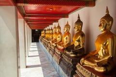 Buddha sitting in line and meditating Wat Pho  temple , Bangkok,. Thailand Stock Image