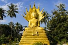Buddha sitting on naga body and naga head protected Stock Image