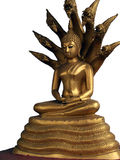 Meditating Buddha protected by King Naga stock photo