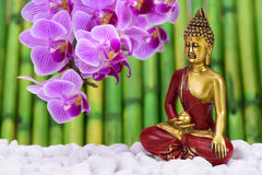 Buddha is sitting in ZEN garden Royalty Free Stock Image