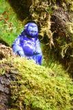 buddha skog royaltyfria bilder