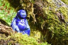 buddha skog arkivbild