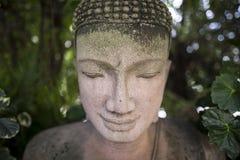 Buddha-Skulptur mit Rücklicht von der Sonne durch Blattvorhang Stockbild