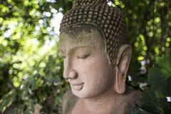 Buddha-Skulptur mit Rücklicht von der Sonne durch Blattvorhang Stockfoto