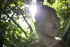 Buddha-Skulptur mit Rücklicht von der Sonne durch den Blattvorhang, der Halo schafft Stockfoto