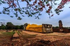 Buddha. Sleeping buddha at Ayutthaya on Thailand Royalty Free Stock Photo