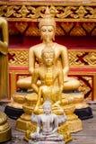 Buddha som förläggas på olika format Royaltyfri Foto