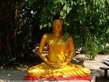 Buddha som mediterar under ett banyanträd royaltyfri bild
