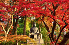 Buddha som mediterar under höstsidor Kyoto Japan royaltyfri fotografi