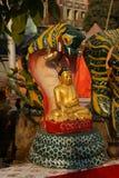 Buddha som skyddas av naga Arkivfoton