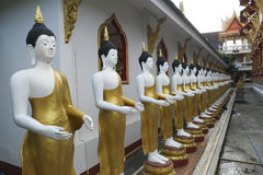 Buddha som tillsammans står Royaltyfria Bilder