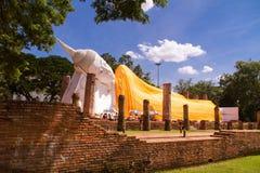 buddha sova Royaltyfria Foton