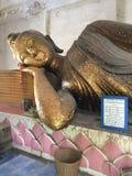 buddha sova Arkivfoto