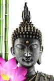 buddha stående royaltyfri foto