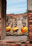 buddha stary Fotografia Royalty Free