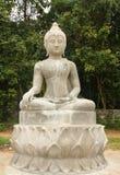 Buddha statua Zdjęcie Stock